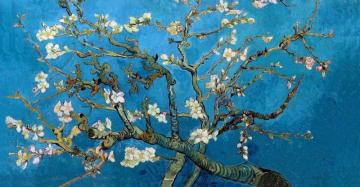 almond tree - almond branches in bloom. Picture puzzle.