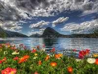 Ζωηρόχρωμο λιβάδι από τη λίμνη - Ζωηρόχρωμο λιβάδι από τη λίμνη.