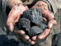 węgiel - surowiec - Węgiel w rękach. Surowiec węgiel - czarne złoto, trzymane w dłoniach. Węgiel trzymany w rękac