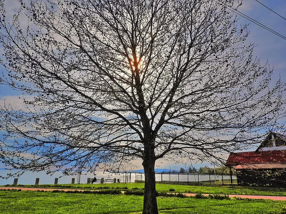 Promenáda u jezera Balaton. puzzle