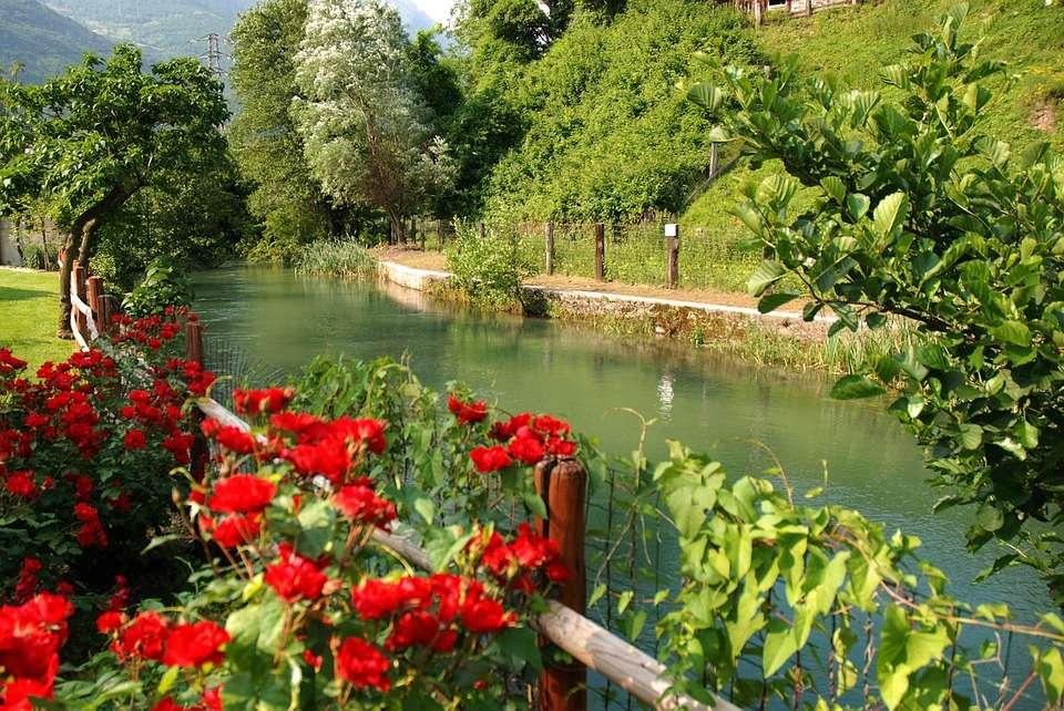 Flores por el río. rompecabezas en línea