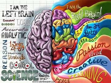 Dwa umysły - Teoria dwóch umysłów, prawej i lewej
