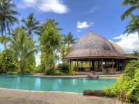 Restaurang vid poolen. - Restaurang nära poolen i Samoa.