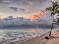 Plaża na Dominikanie. - Plaża na Dominikanie. Karaiby. Najlepsza strefa łamigłówek z naturą.