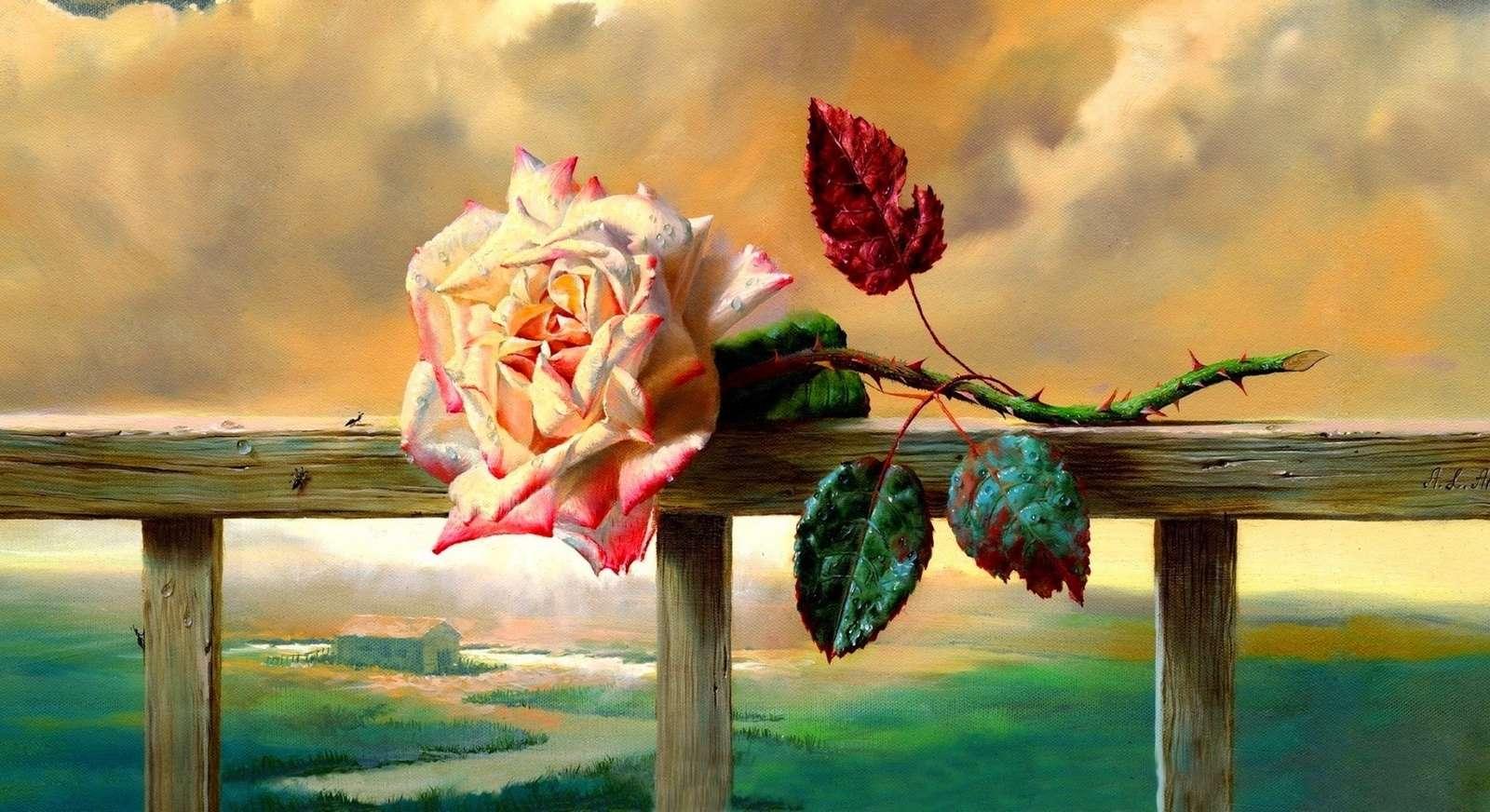 Róża i zachód słońca - Kwiat róży. Kolorowa układanka-puzzle (12×7)