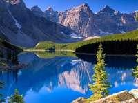 Швейцарски Алпи