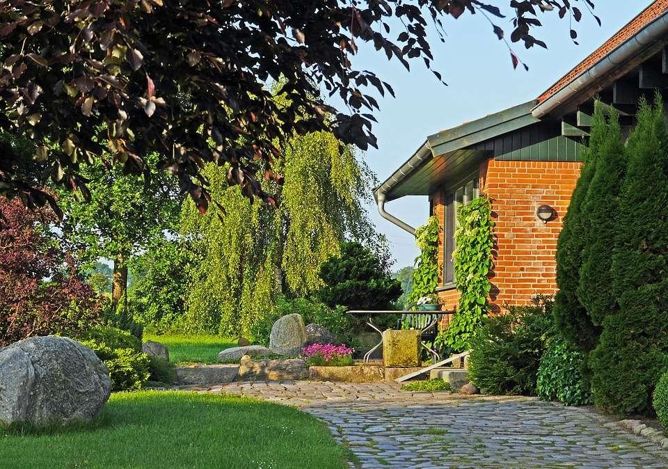 Hinterhof-Garten - Hinterhof-Garten. Sommer (10×10)