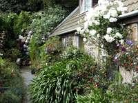 Nel giardino inglese. - Nel giardino inglese. Jersey.
