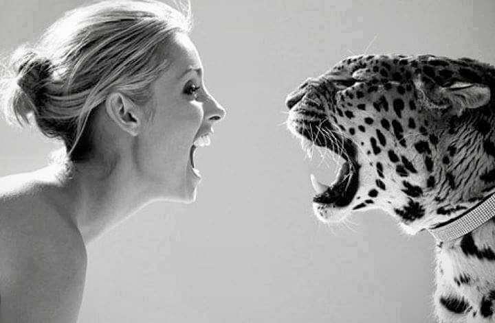 animale minunate