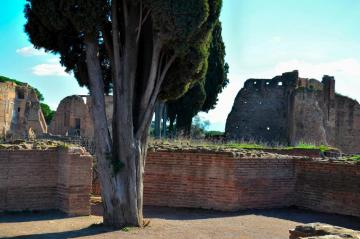 Rome - Palatine - Rome, Palatine. The area around the former imperial palaces.