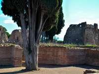 Róma - Palatine