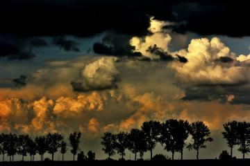 Stormy evening. - Stormy evening on the fields.
