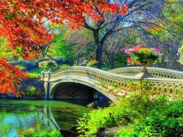 Ponte nel parco. - Un ponte di pietra in un parco colorato.