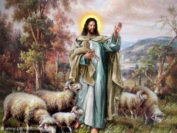 YAHUSHUA - The Savior looks after his sheep