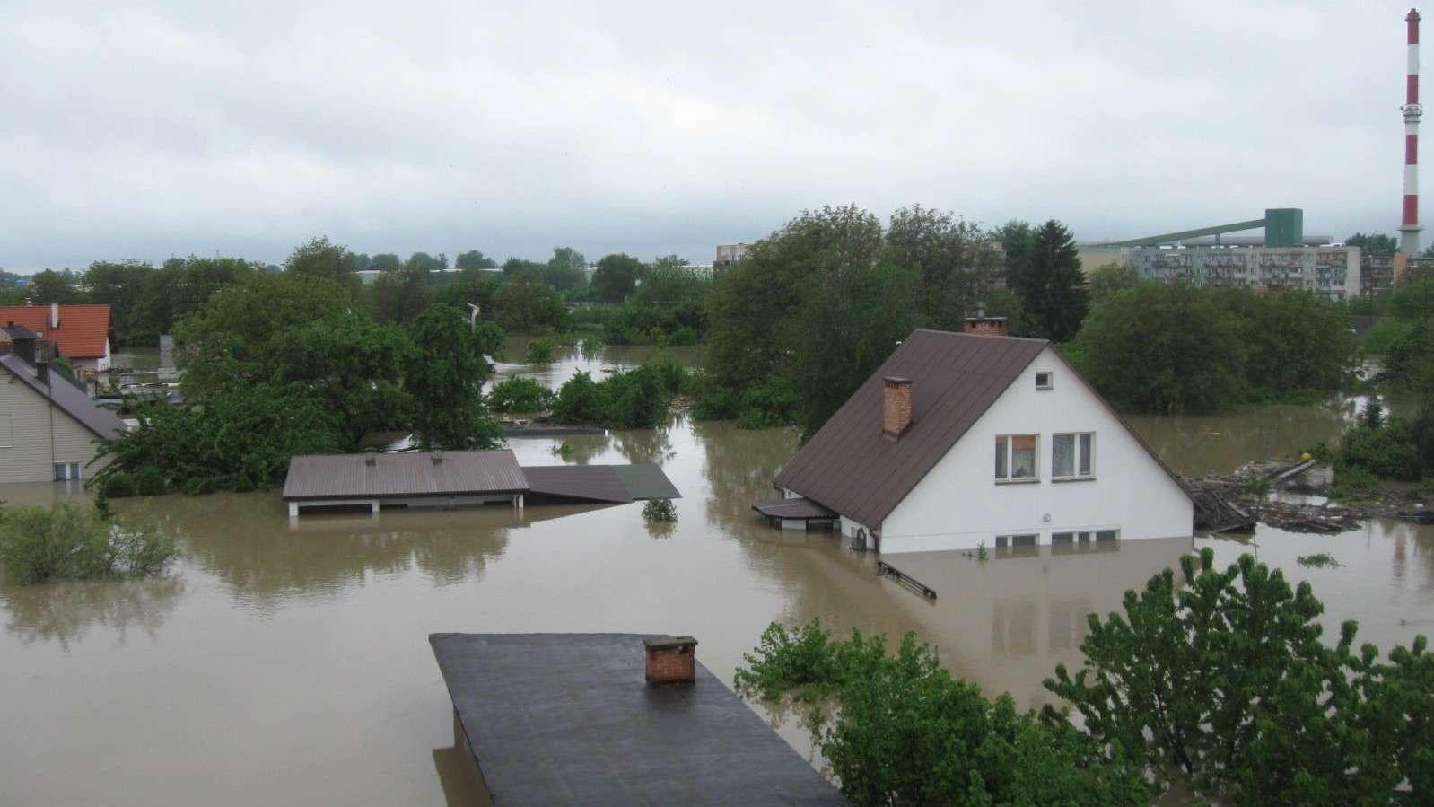 árvíz a Sandomierz folytatásban - Nagy árvíz a Sandomierz folytatásában (10×10)