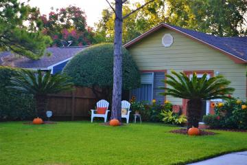 Garden in front of the house. - Pumpkins in the garden in front of the house.