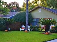 Jardín en frente de la casa. - Calabazas en el jardín en frente de la casa.