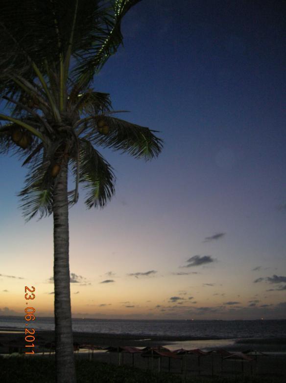 Sonnenuntergang mit Palmen Puzzle