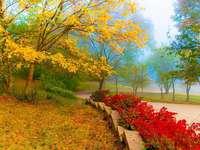 die Natur selbst - Drei farben. Ansichten wie aus einem Märchen im Herbst. Drei Farben: Gelb, Rot und Grün.