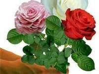 Flori de ziua