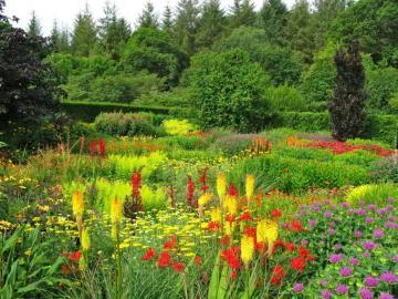 Fiori nel giardino - Fiori nel giardino inglese.