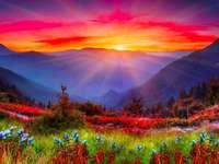 Ομορφιά της φύσης. - Όμορφη φύση: βουνά, ουρανός, λουλούδια.