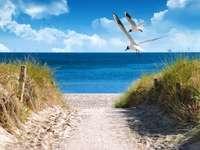 Beach in Karwia.