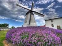 Windmill on Bornholm.