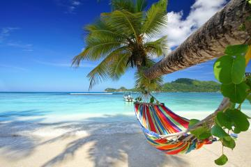 Hammock on the beach. - I will be braking here in the winter.