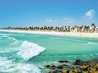 Oman strand. - Semester i avlägsna Oman.