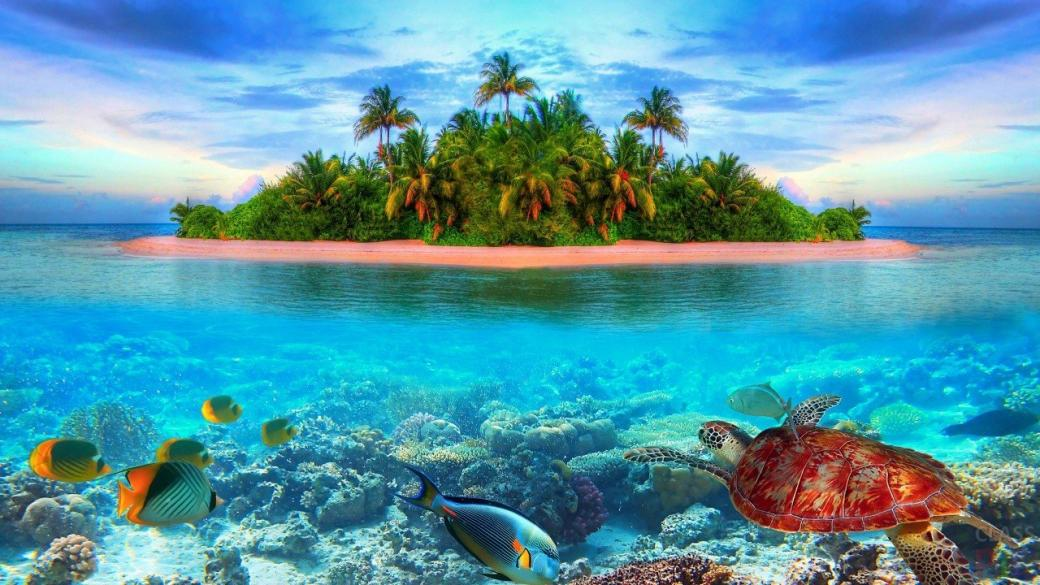 Hawaiian Landscape Play Jigsaw Puzzle For Free At Puzzle Factory