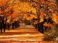 есенна алея