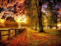 podzimní krajina - podzimní krajina, silnice, plot, padám podzimní listí
