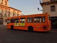 vénitien buss