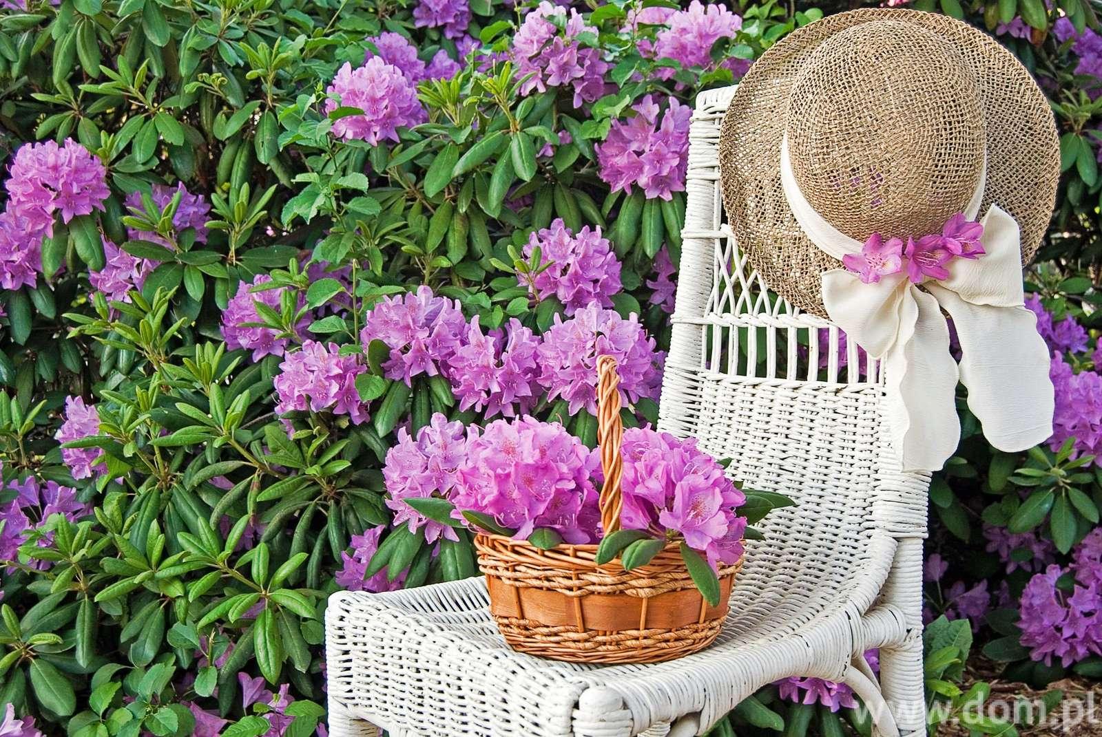 I trädgården - Rosa blommande rododendron (5×5)