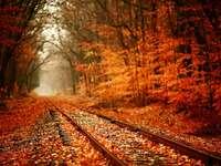 есенен пейзаж - есенен пейзаж, ред дървета, покрити песни