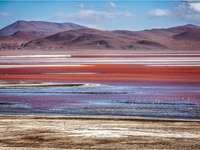 Colorada lagúna Bolíviában.