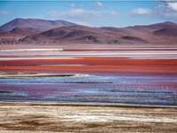 Laguna Colorada en Bolivie.