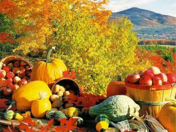 Widok na wzgórze. - Krajobraz jesienny z widokiem na wzgórze.