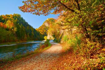 Autumn road. - Autumn road on the river.