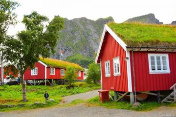 Norway. - Red houses in Lofoten, Norway.