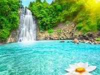 landskap med vatten