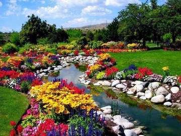 Разцъфнали цветя в парка. - Разцъфнали цветя в парка.