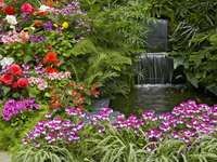 A charming corner in the garde - Flowers near the pond. A charming corner in the garden, Flowers near a pond.
