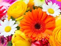 colorful flowers - colorful bouquet of flowers