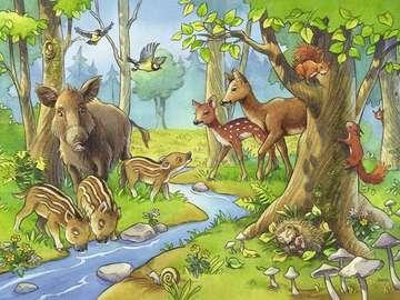 Skogsdjur. - För barn: skogsdjur.