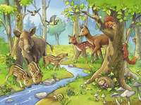 Wild animals. - For children: forest animals.