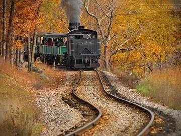 Lokomotywa. - Pojazdy: zabytkowa lokomotywa.