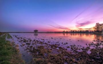 "Colorful wetlands - The photo comes from the \ ""Tapeciarnia \"""