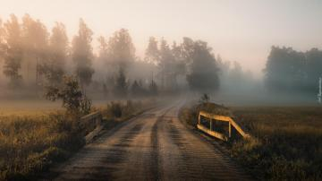 "Foggy road - The photo comes from the \ ""Tapeciarnia \"""